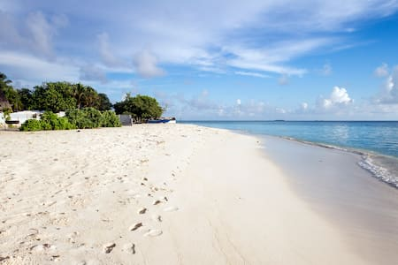 Maldives Beach Holiday, Tropic Tree - Gulhi