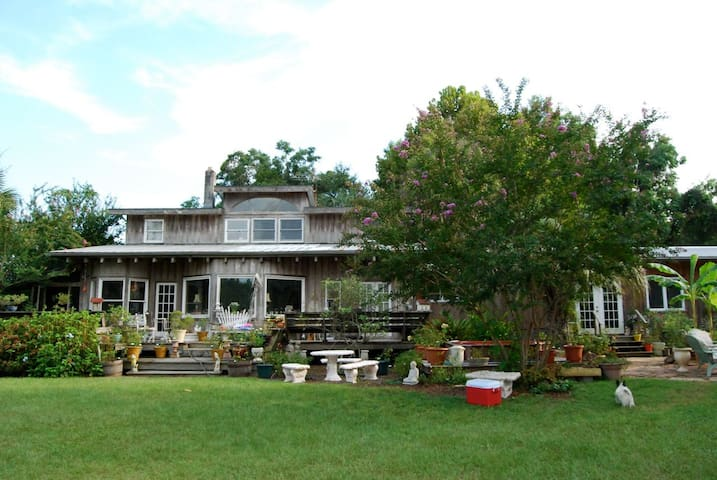 A Sweet Organic Country Retreat  - Alachua - Wikt i opierunek