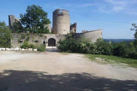 Château de Roussillon-la barbacane- - Saint-Pierre-Lafeuille