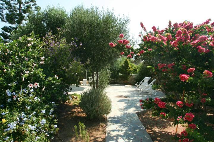 Family Getaway, Lush Colourful Garden