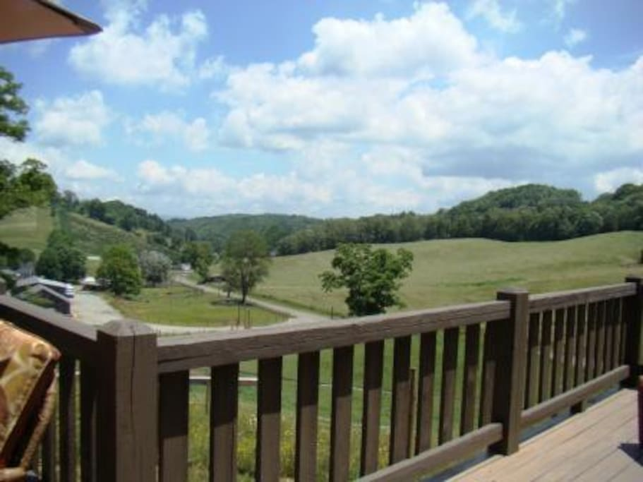 Overlook cabin back porch view