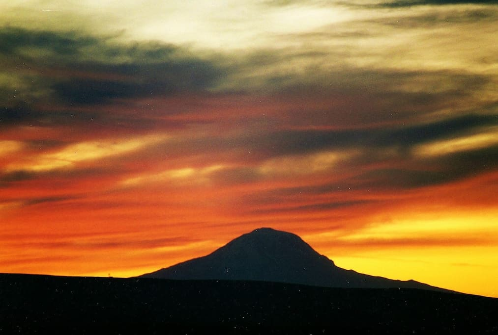 One of our beautiful sunsets with Mt. Adams in the foreground.