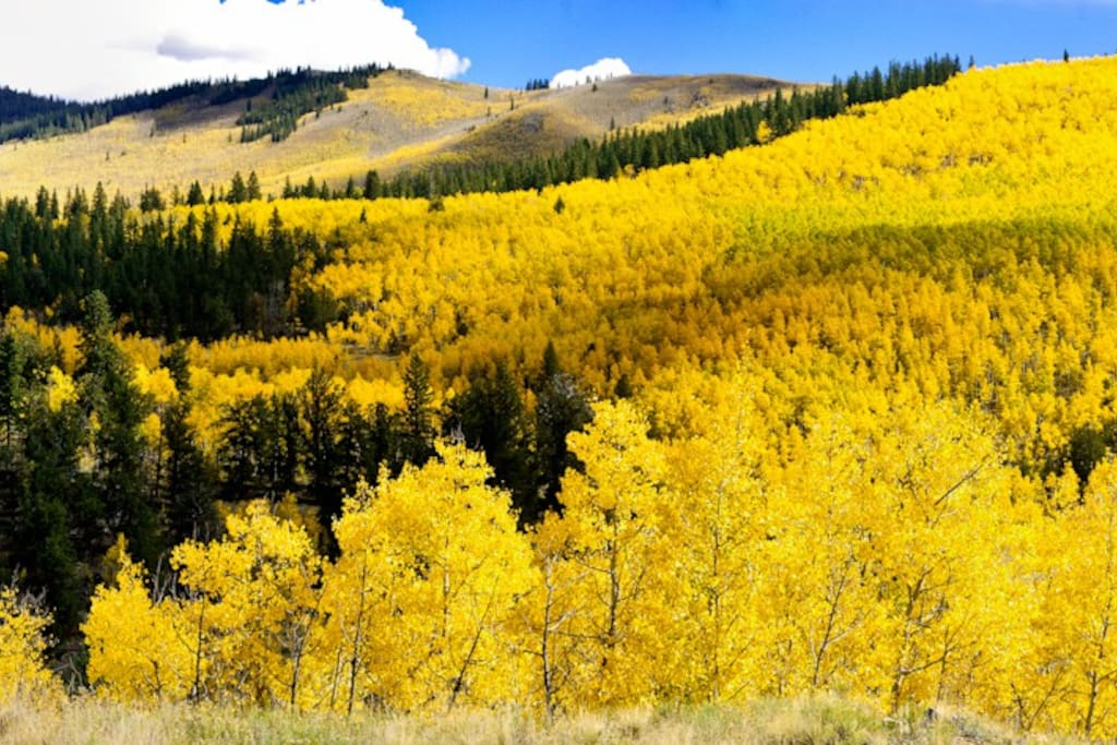 Fall colors on Kenosha pass last week in Sept and first week of Oct.