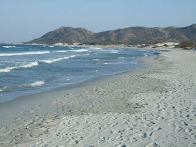 Capo Comino Dunes Woods Sea - Siniscola - Apartemen
