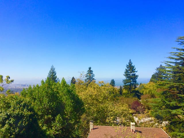 Bay View, Hot Tub and Garden, - Berkeley - House