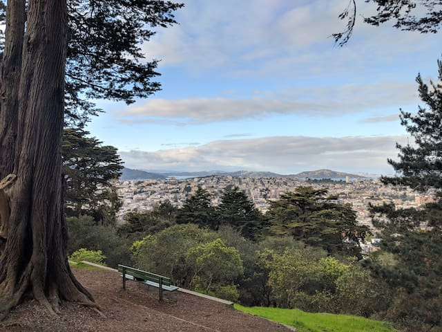 Run in Golden Gate Park, Sleep at Idyllic Condo!