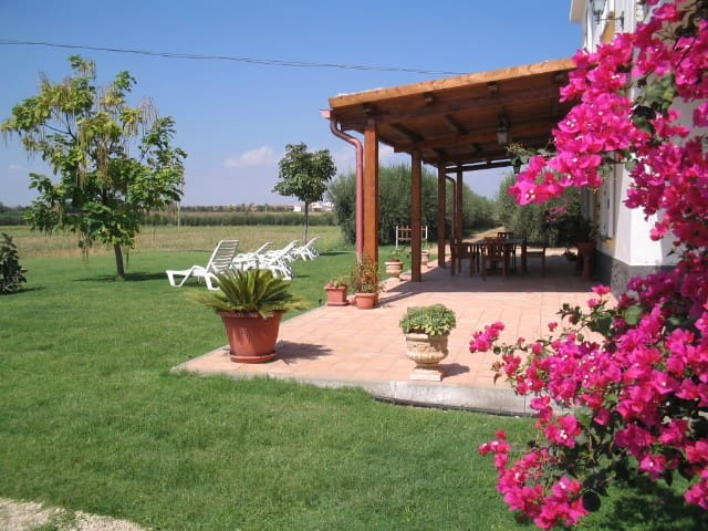 Country house near sea - Pisticci - Departamento