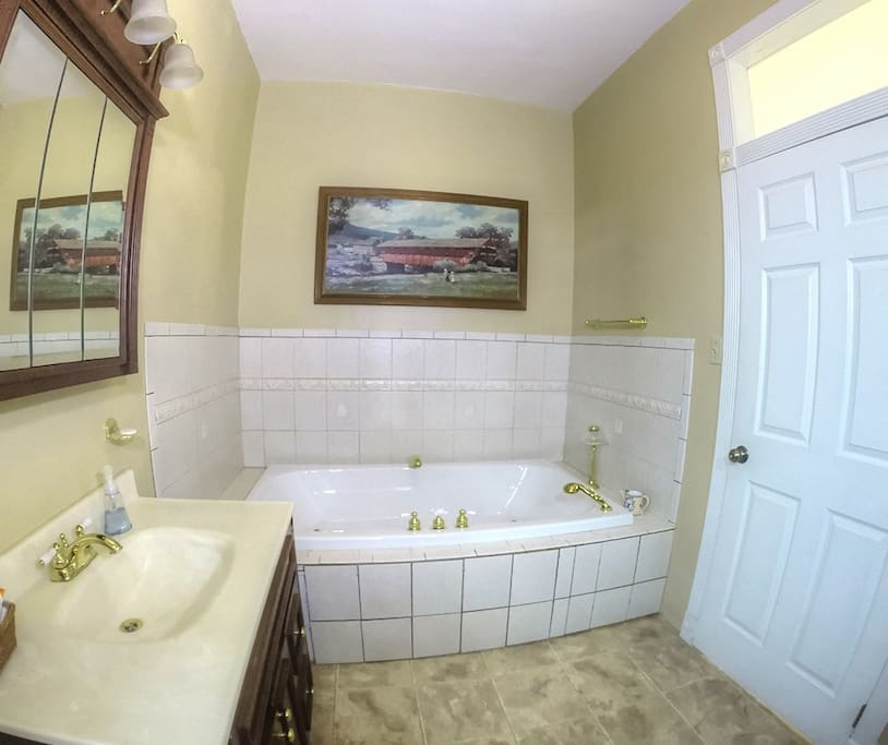 Library Master Bedroom With Jacuzzi Houses For Rent In Philadelphia Pennsylvania United States