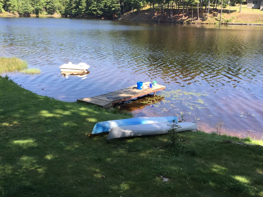 Yard, dock lake and kayaks