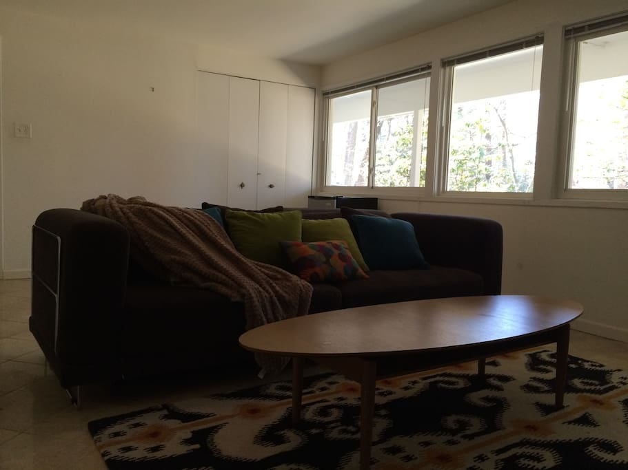 Den has a comfortable sofa, coffee table, cool rug and light