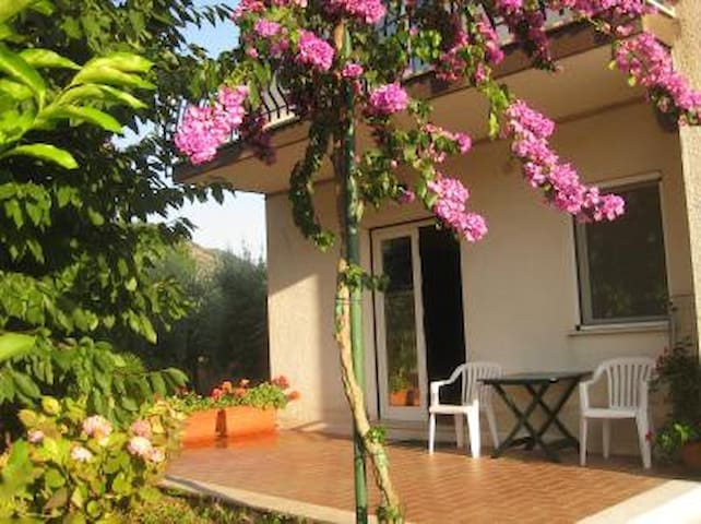 Apartment holiday rental in a villa - Frosinone - Daire