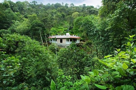 Unique Experience in Thekkady - Periyar - Bed & Breakfast