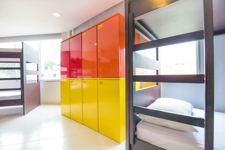 Premium Backpacker 8 Bed Mixed Dorm