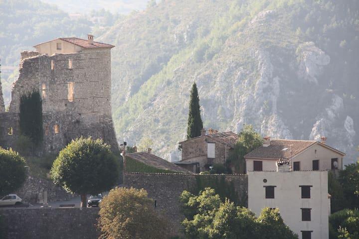 Au pied du Chateau de Gréoliéres - Gréolières - Departamento