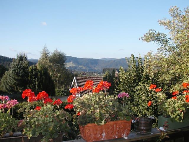 Sunny room near Titisee - Breitnau - House