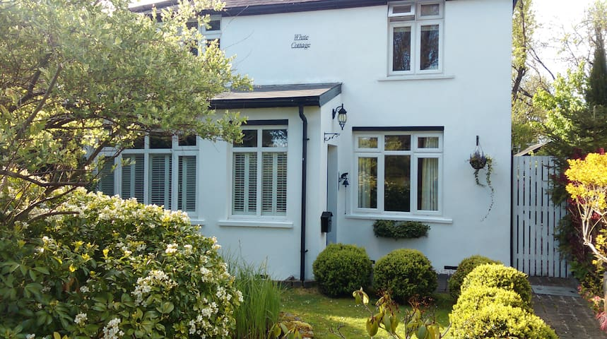 Ground Floor Double Country Cottage - Londres - Bed & Breakfast