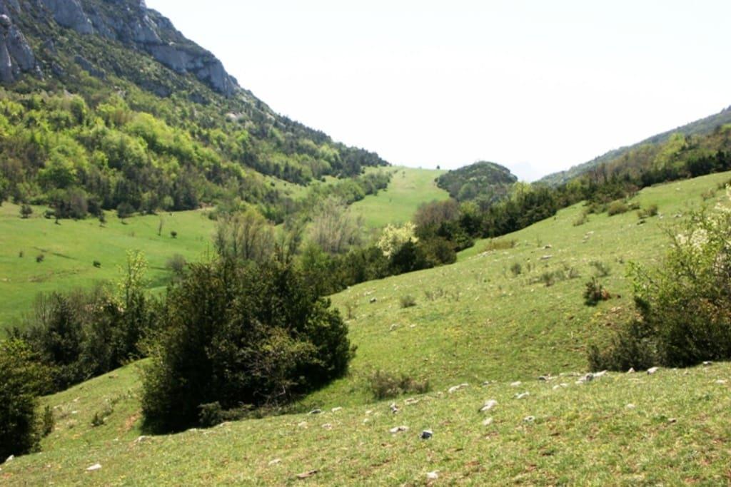 Une vallée où le temps s'arrête