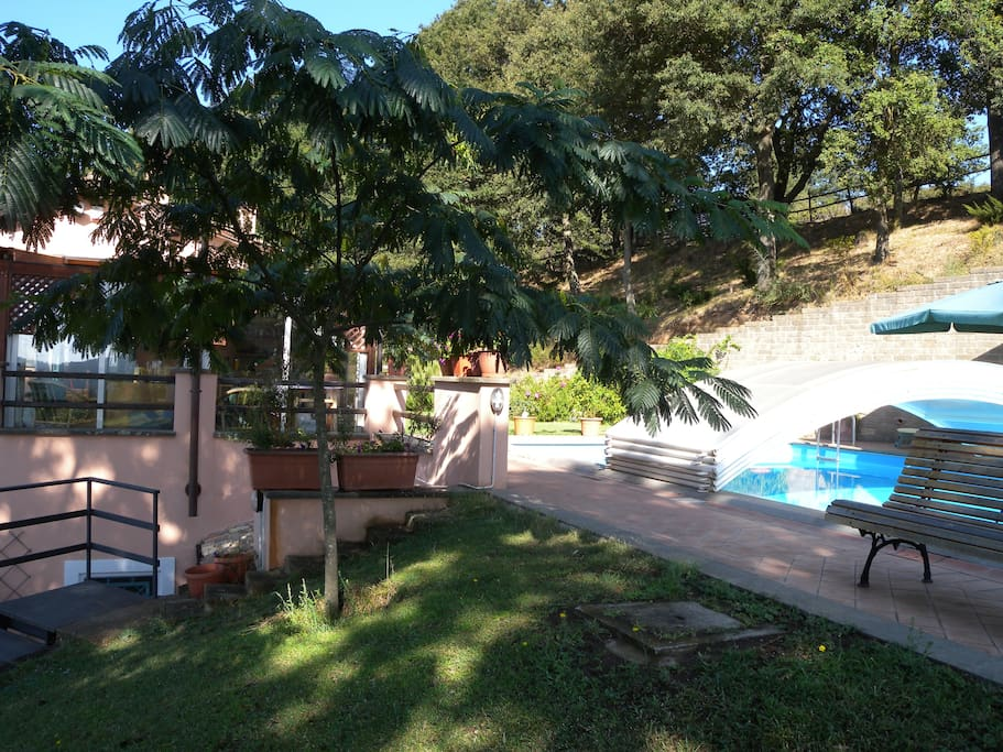 View of the pool 1