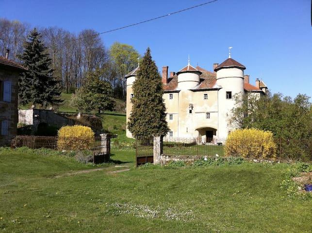 Château de Montfort - Eyzin-Pinet - Castelo