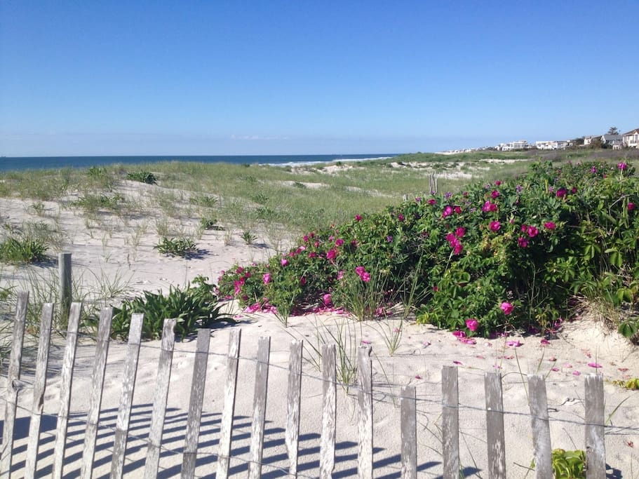 Dune between house and beach