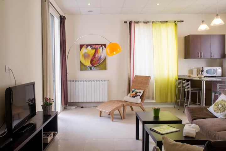 Charming Apartment 1415 - Ajaltoun