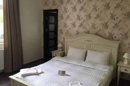 Apartment Pensiunea 1 Mai - Oradea - Apartment