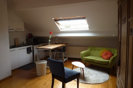 new vintage studio for 2 persons - Leuven - House