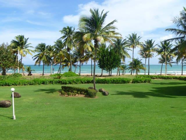 Yunque Beach Villa - Rio Grande - Villa