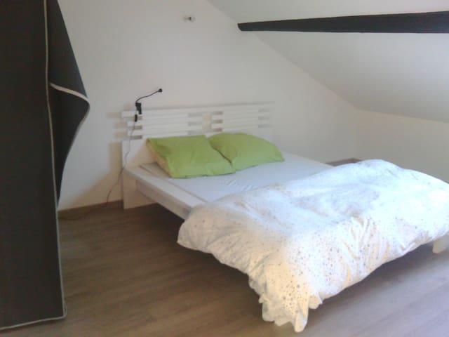 Grande chambre de 18m2, poutres app - Pont-à-Mousson - Apartemen