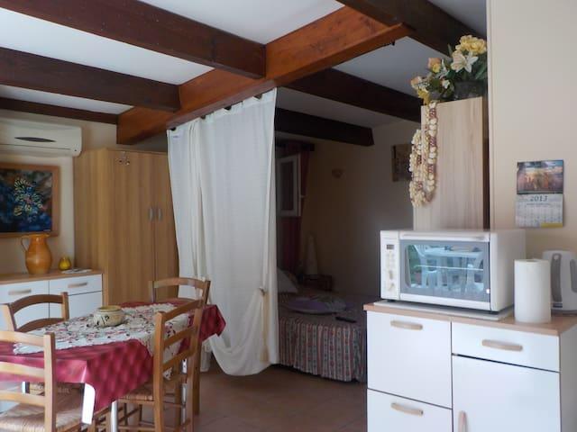 Agréable studio bien situé ! - Prunelli-di-Fiumorbo - Apartment