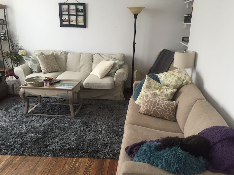 Huge living room, comfortable & inviting. Cable TV and free wifi