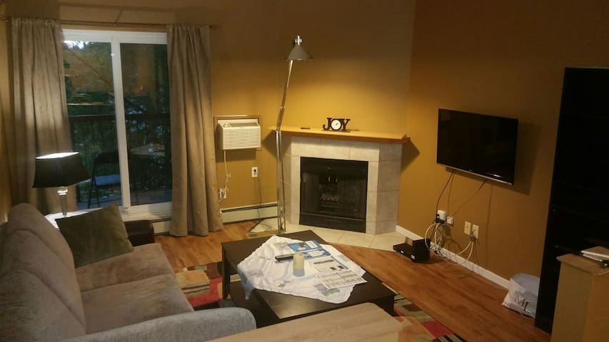 Fully furnished condo in South End! - Winnipeg - Apartment
