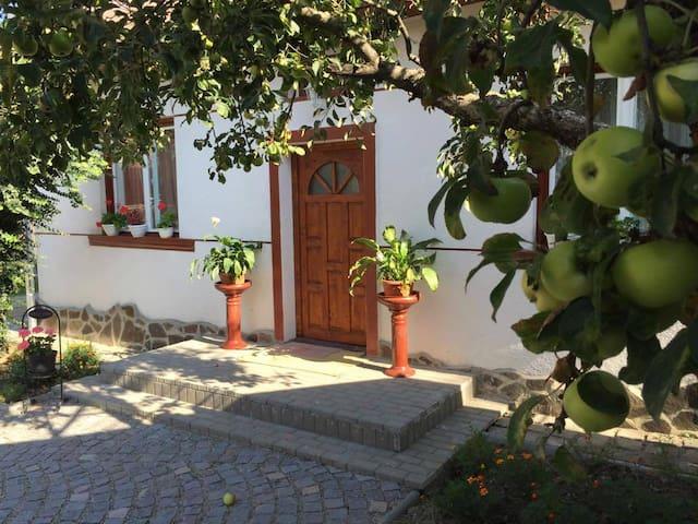 Villa Hinto - Trasura  Tansylvania - Odorheiu Secuiesc - Casa