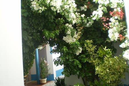 Apartamentos Maia - V.N.Milfontes - Vila Nova de Milfontes