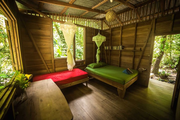 Homestay in charming jungle cabin