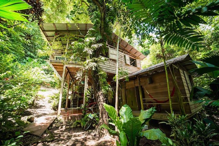 Charming jungle cabin 150m from Punta Uva beach