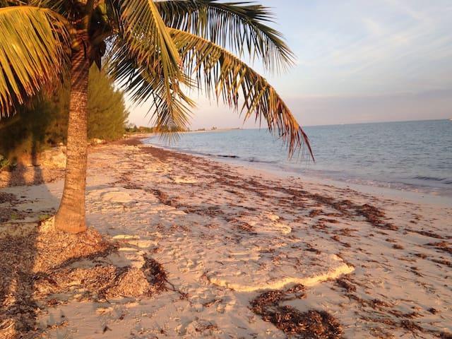 The Blue Inn Villa Freeport Bahamas - Freeport - House