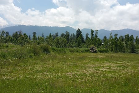 Place for adventurers - Tangmarg - Zelt