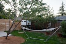 Back yard space with hammock for sunny days. Cherry tree, apple tree and chicken coop in the background.