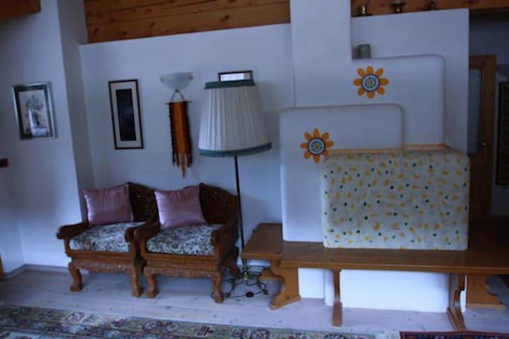 Passa le vacanze nelle Dolomiti!!!! - Santo Stefano di Cadore - Apartament