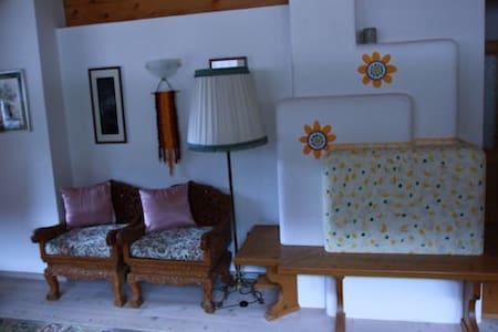 Passa le vacanze nelle Dolomiti!!!! - Santo Stefano di Cadore - Wohnung
