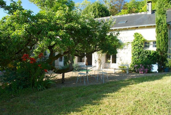 Le Clos Pommier - Candes-Saint-Martin - House