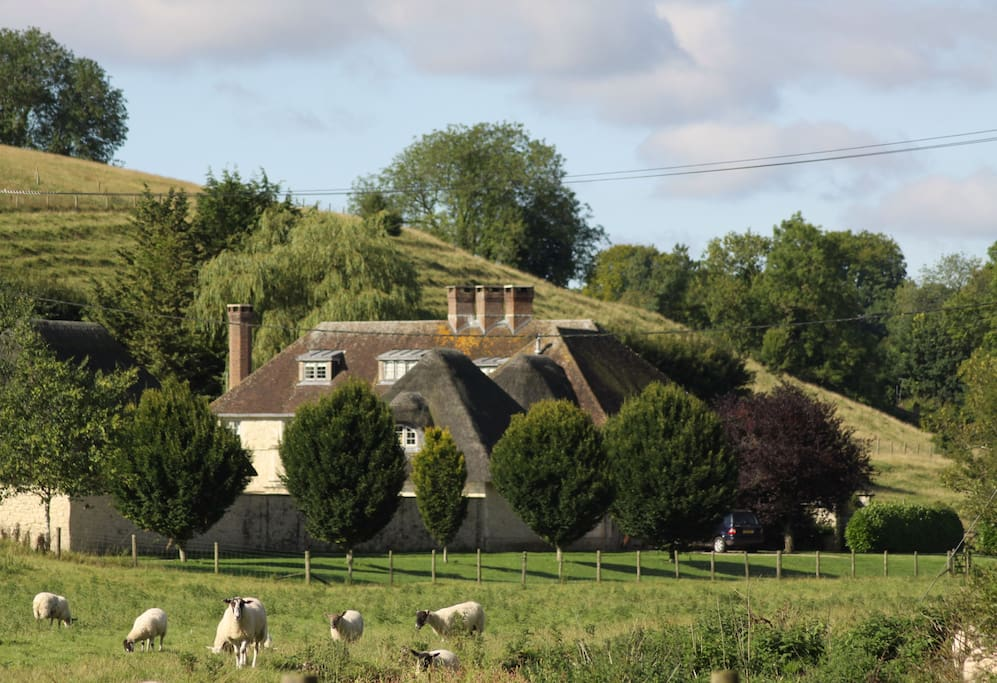 The lodge is part of Chalkway House set in acres of ancient meadows.