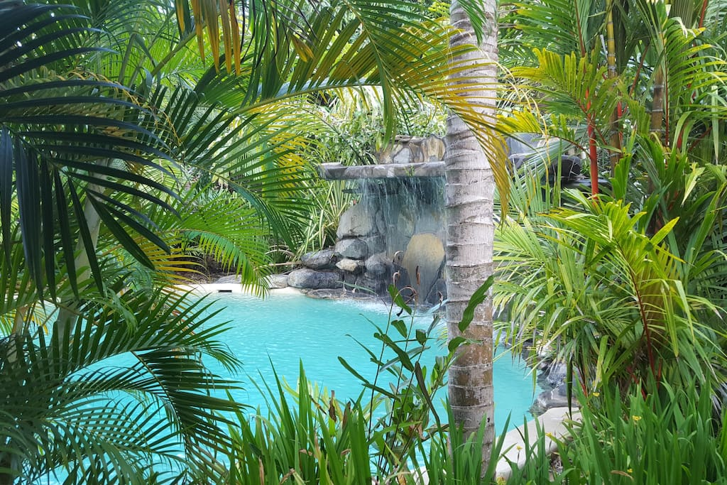 View of the pools waterfall and surrounds
