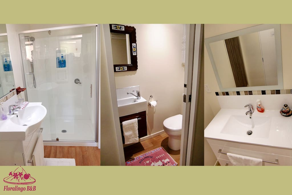 Shared Bathroom (shower + vanity + toilet) as well as a spare W.C. and vanity --- to be shared by max. 5 guests
