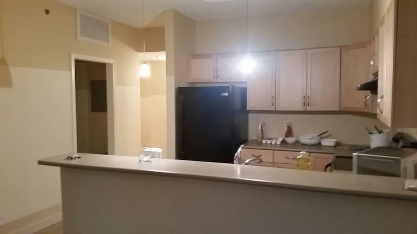 曼大门口的酒店式公寓长短租。拎包入住。 - Winnipeg - Huoneisto