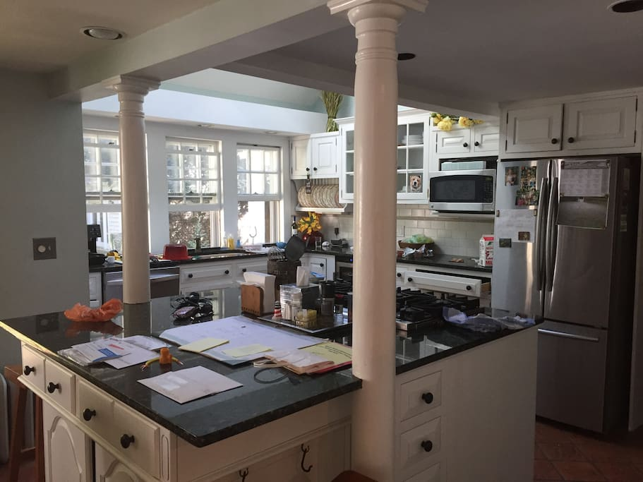 Granite, Stainless, Open floor plan onto great room. Gas range, skylights, view of backyard with live, lit Christmas tree!