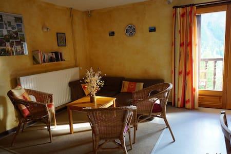 Gentiane aux Soldanelles à St-Véran, soleil et vue - Saint-Véran - Apartmen