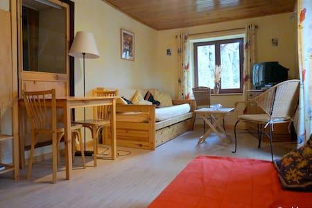 Ancolie aux Soldanelles à St Véran - Saint-Véran - Apartament
