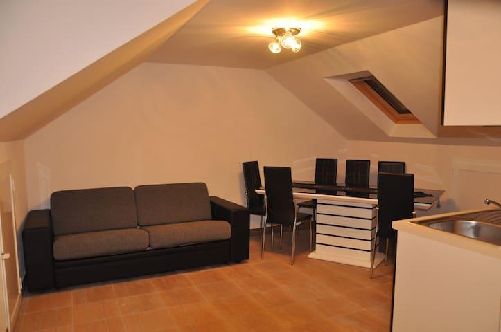 Studio Apartment Seno